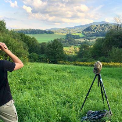 Mammal Watching In The Eastern Carpathians