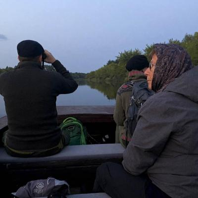 Watching Beavers On The Wild Poland Boat Cruise In The Biebrza Marshes