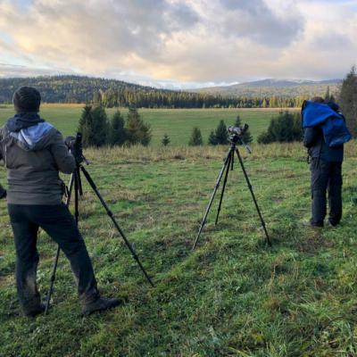 Looking For Wolves In The Eastern Carpathians
